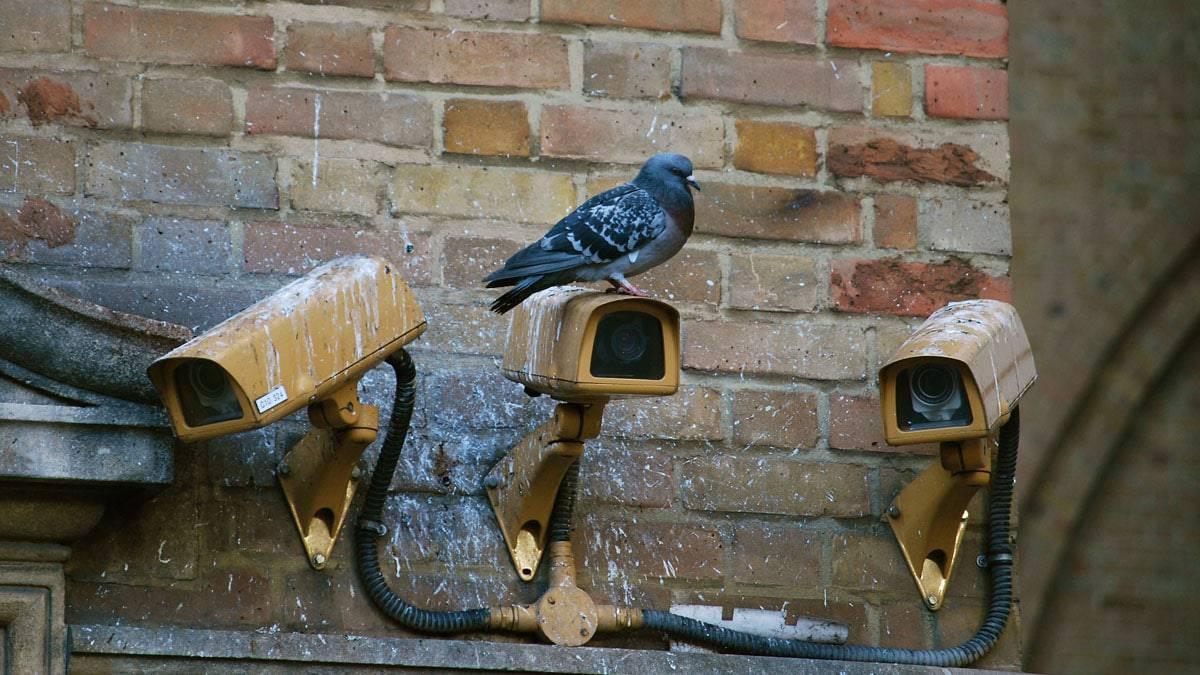 In Cina videocamere di sorveglianza fuori e dentro casa