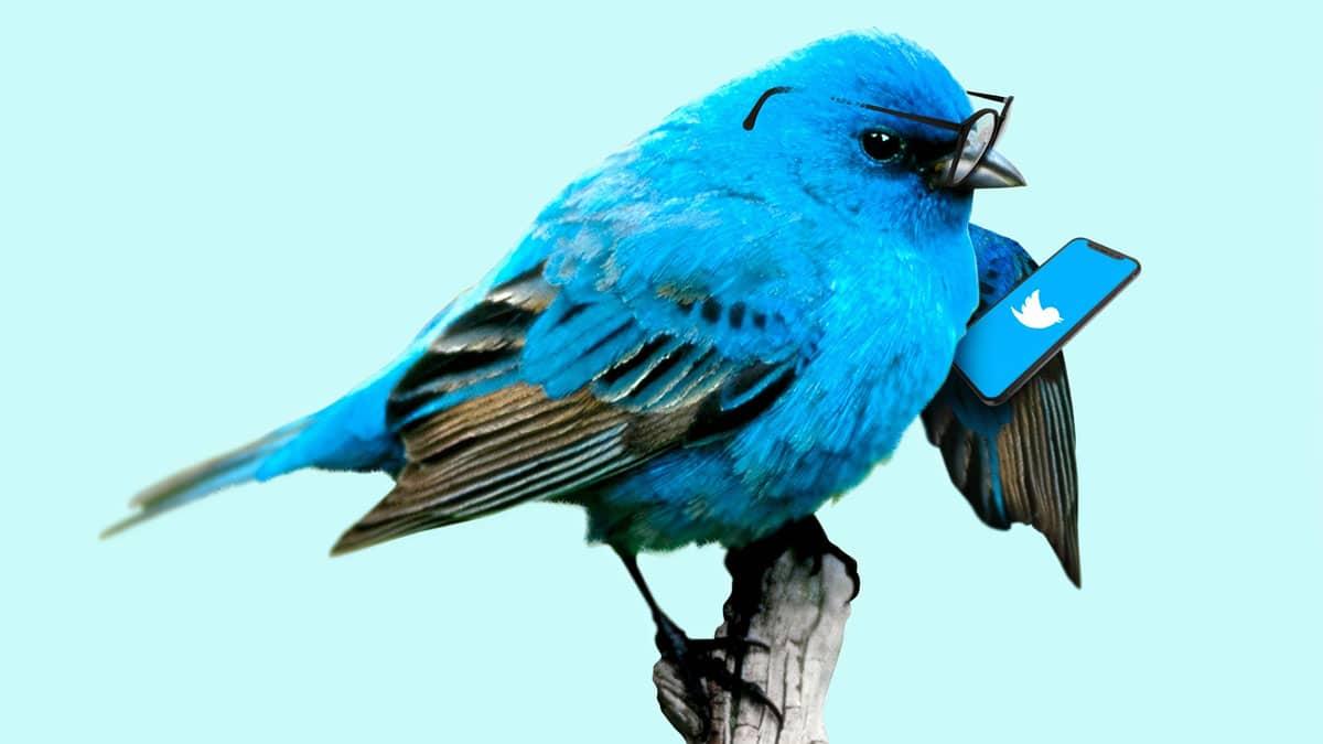L'attacco informatico contro Twitter