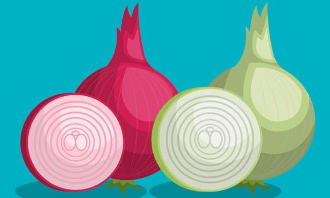 Guida all'utilizzo di Tor Browser