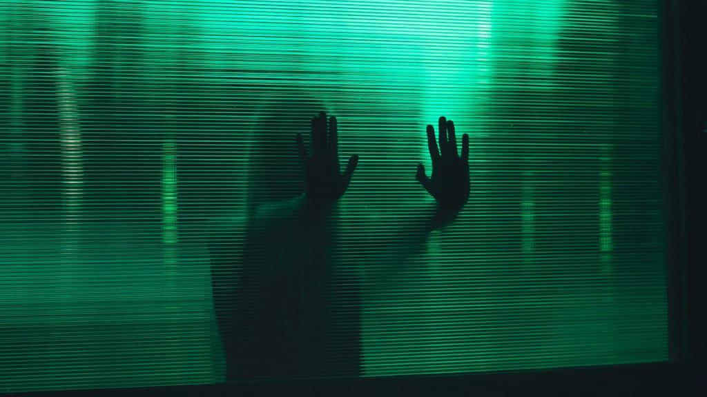 Lo spettro di una dittatura digitale