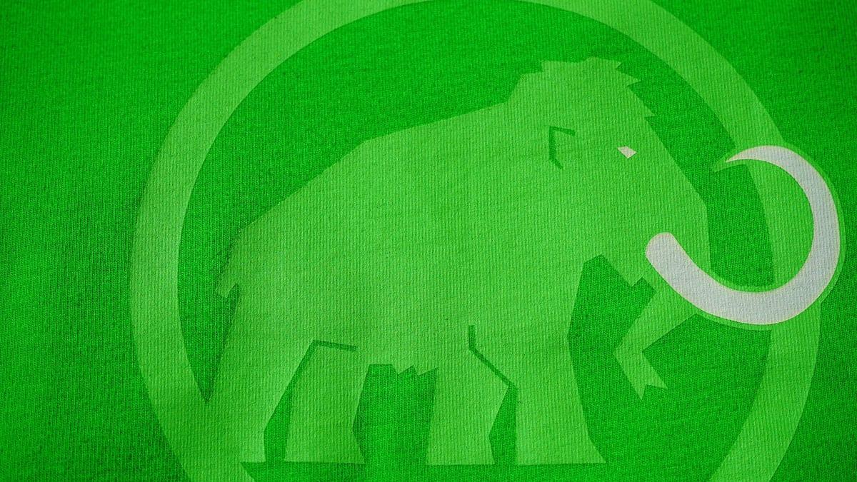 Cos'è e come funziona Mastodon?